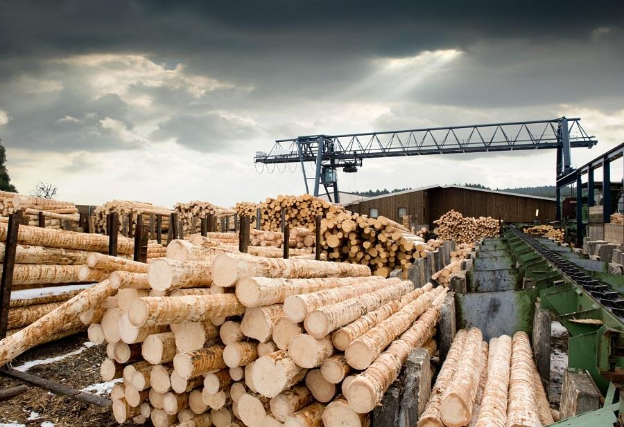 بررسی نمایشگاه صنعت چوب هانوفر